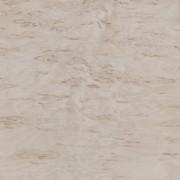 """Стеновая панель """"Берёза Песчаная"""" №17. Толщина 6мм. Арт. SP060019"""